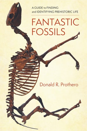 Fantastic Fossils