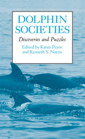 Dolphin Societies