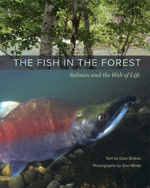 The Fish in the Forest