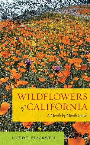Wildflowers of California