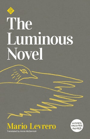 The Luminous Novel