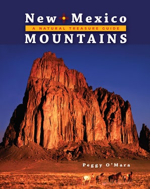 New Mexico Mountains: A Natural Treasure Guide